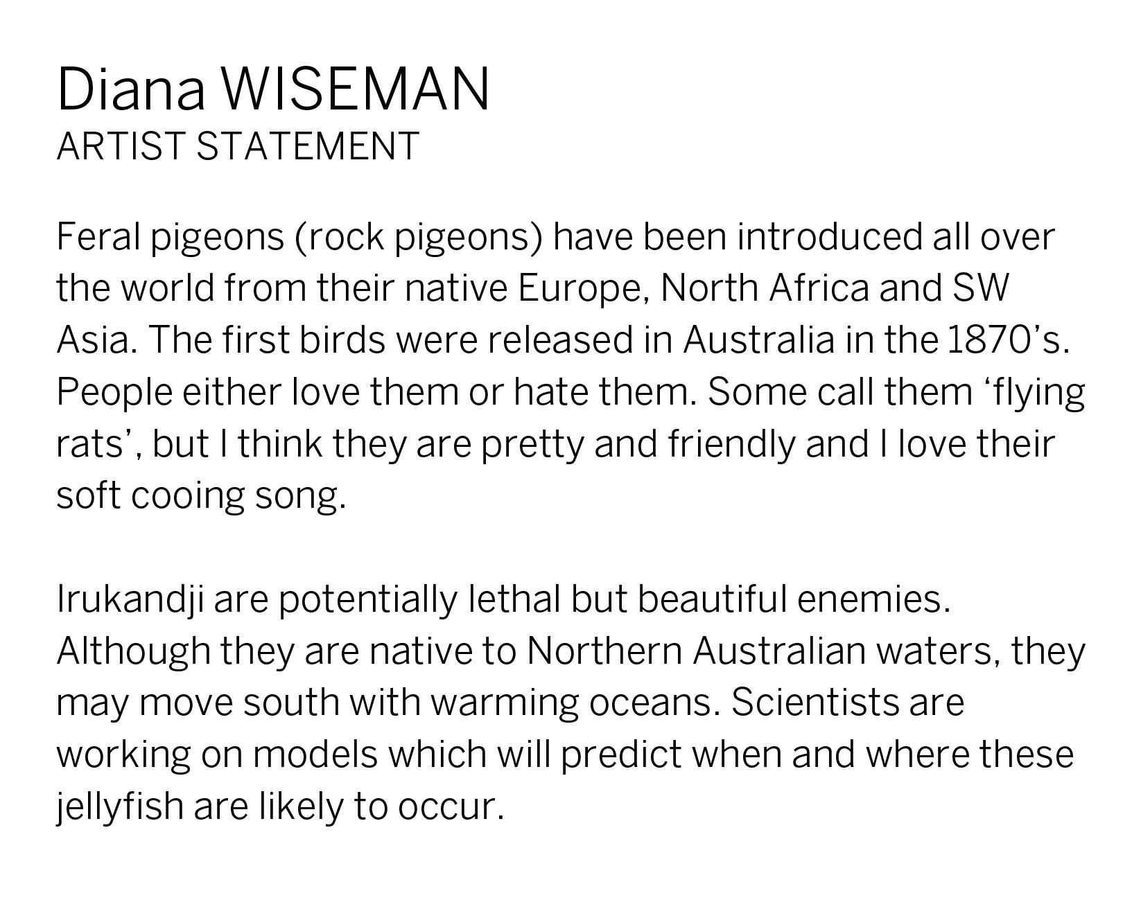 Diana Wiseman Artist Statement