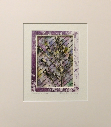 Unframed artwork by Julie Bignell of a b&w flower cut out in the foreground with textured multi-coloured print in the background and a printed purple border