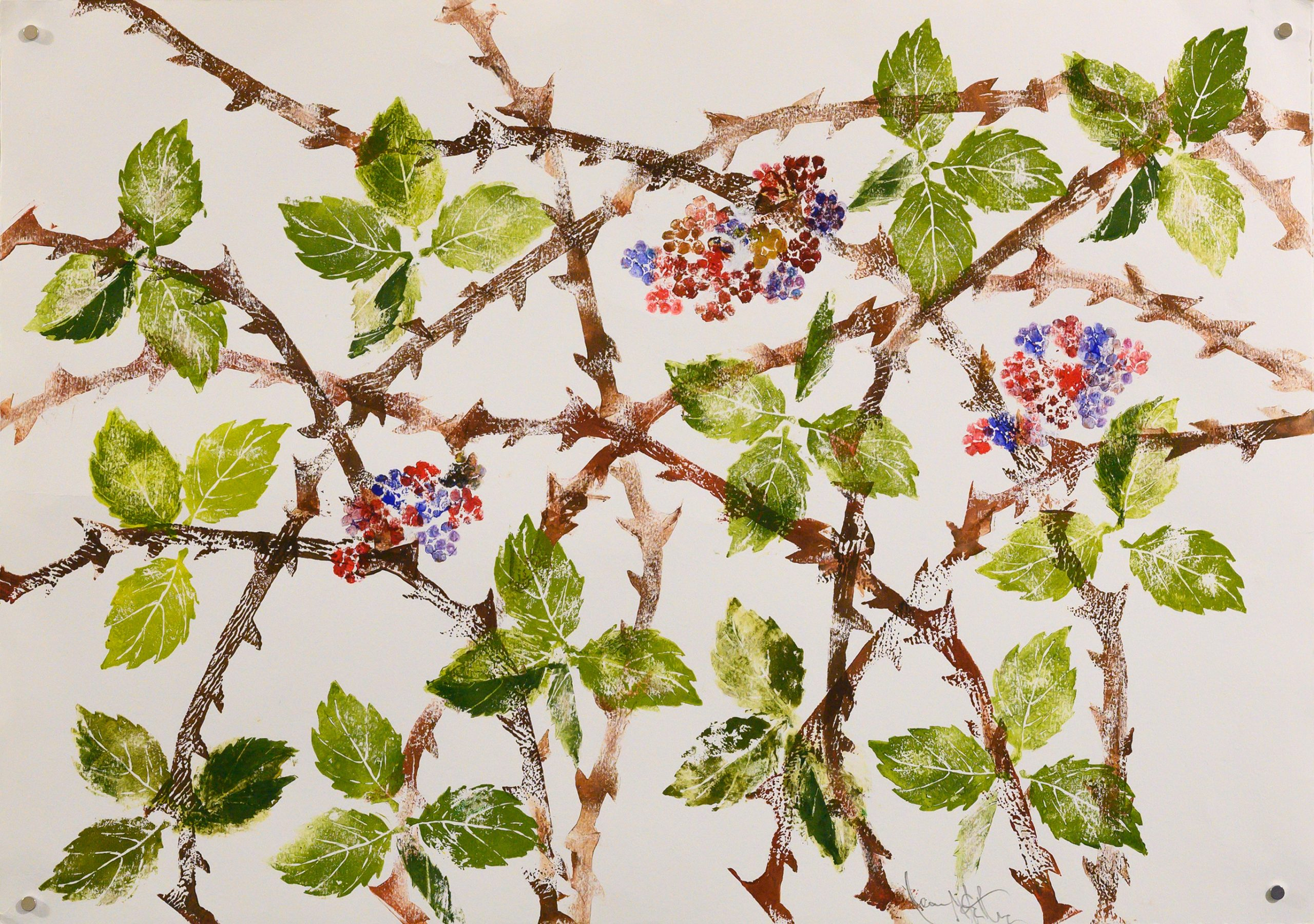 Unframed artwork by Jean McArthur of red and purple blackberries, brown spiky vines and green leaves
