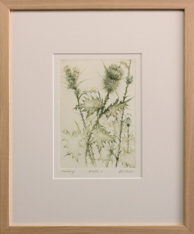 Framed artwork by Libby Altschwager of a bottle green image of a Scotch Thistle