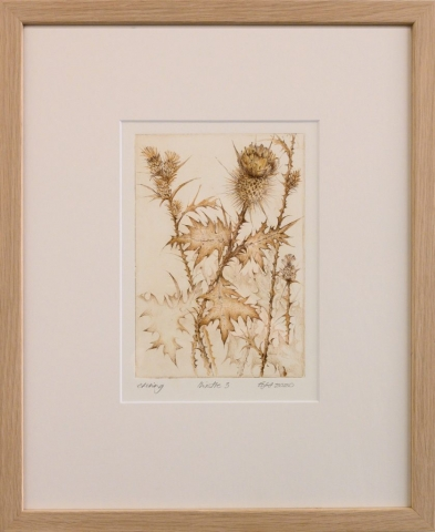 Framed artwork by Libby Altschwager of a brown image of a Scotch Thistle
