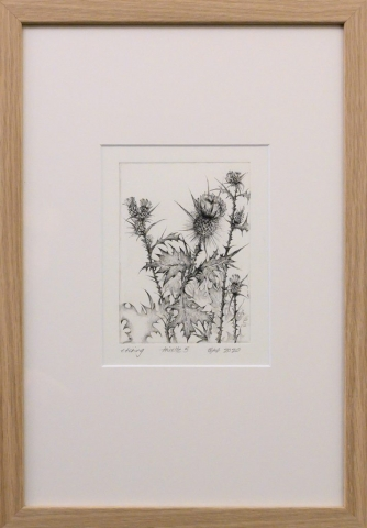 Framed artwork by Libby Altschwager of a b&w image of a Scotch Thistle