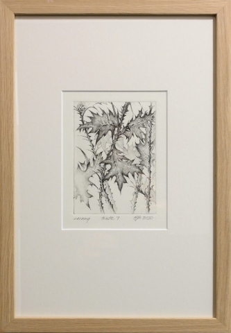 Framed artwork by Libby Altschwager of a b&w image of Scotch Thistle leaves