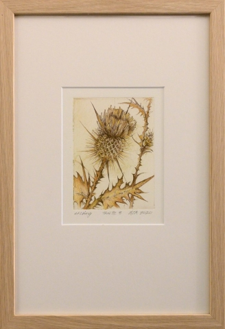 Framed artwork by Libby Altschwager of a close up of a brown Scotch Thistle