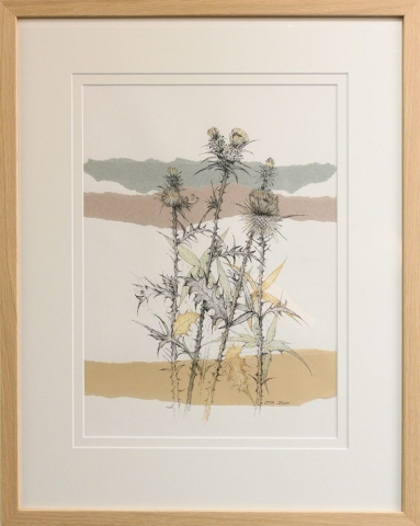 Framed artwork by Libby Altschwager of 3 b&w thistles with sections of green and sepia colour with three coloured strips of paper in the background