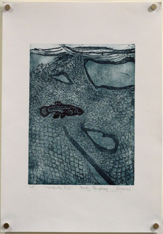 Unframed artwork by Trudy Tandberg of small fish underwater with net texture on dark blue background