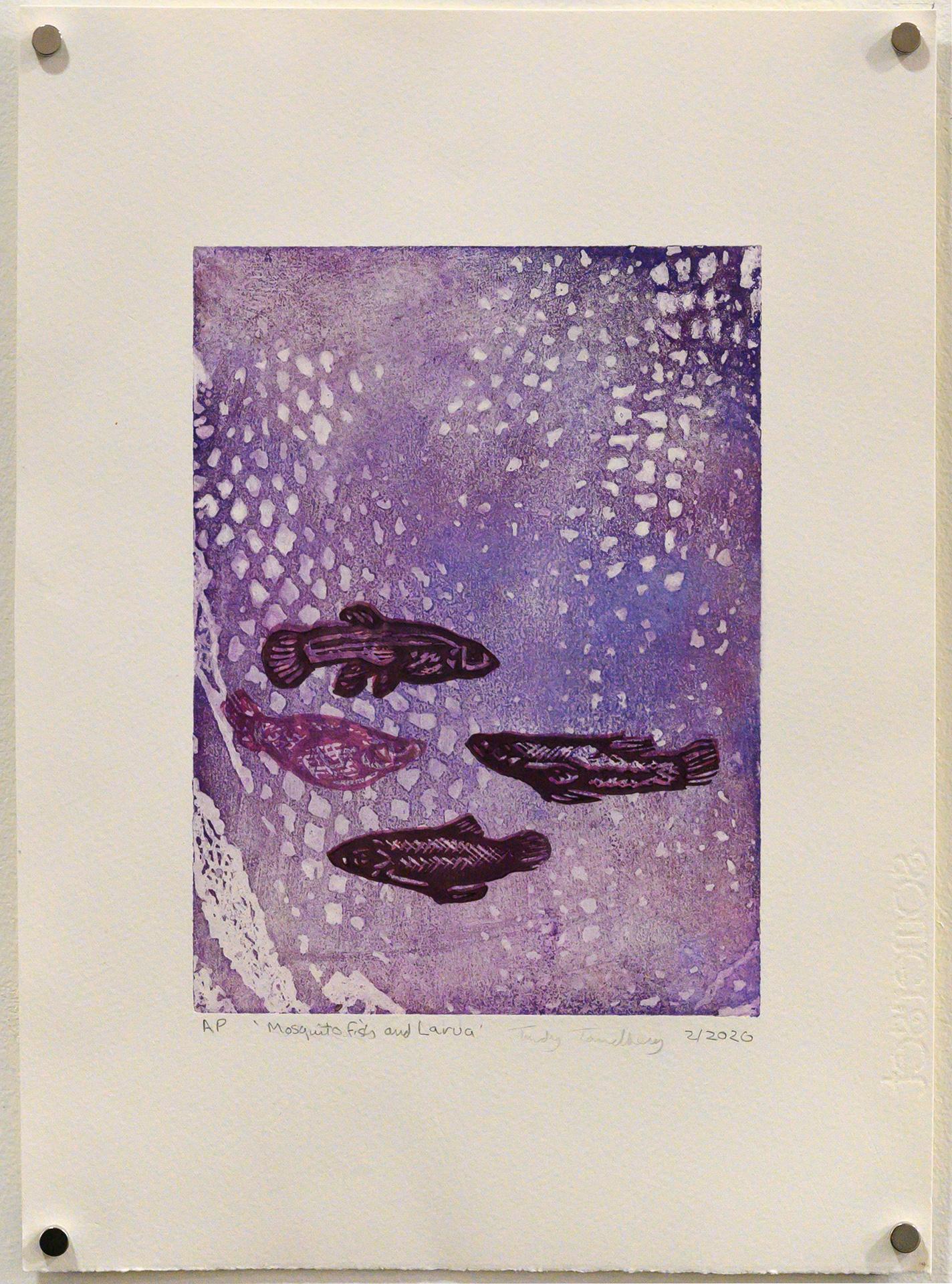 Unframed artwork by Trudy Tandberg of 4 small fish underwater with purple background