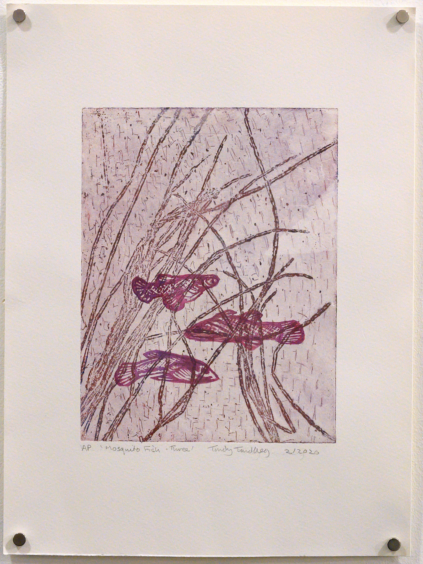 Unframed artwork by Trudy Tandberg of 3 small fish in rushes with light purple background