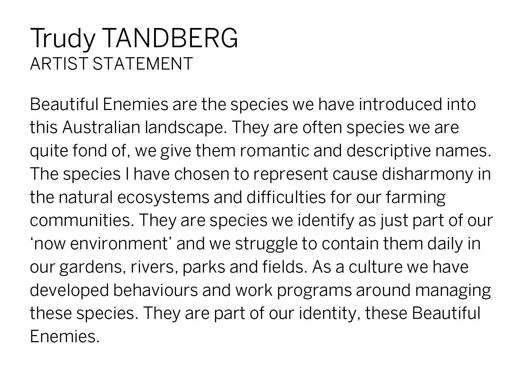 Trudy Tandberg Artist Statement