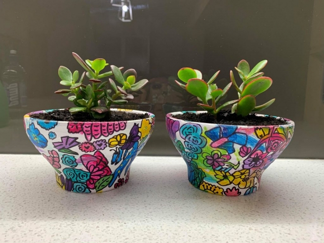A white garden pot with colourful paint splotches and sharpie pen outlines with succulent planted in them